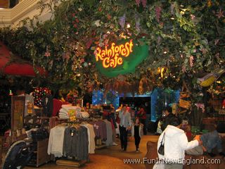 Rainforest Cafe Ct Hours