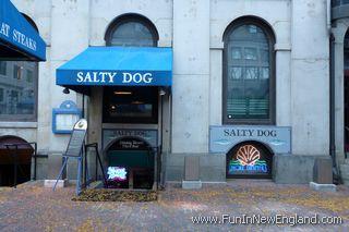 salty dog boston